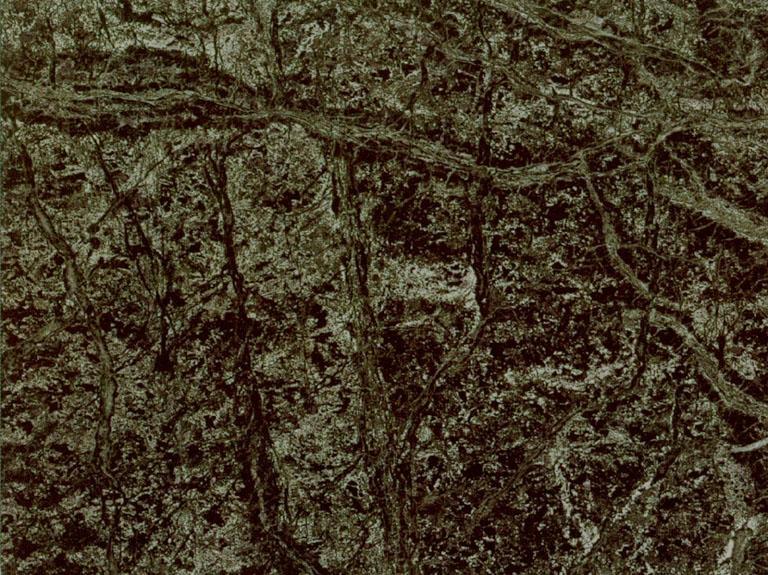 Detallo t cnico verde macael m rmol natural pulido espa ol for Significado de marmol