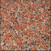 Detallo técnico: g562, granito natural pulido chino
