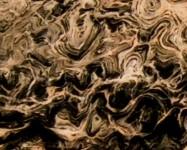 Detallo técnico: FRAPPUCCINO, mármol natural pulido brasileño