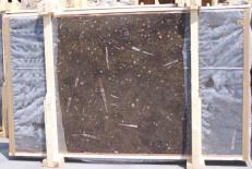 Suministro planchas pulidas 0.8 cm en mármol natural MARRON FOSSIL E-14694. Detalle imagen fotografías
