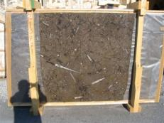 Suministro planchas pulidas 2 cm en mármol natural MARRON FOSSIL edi222mf. Detalle imagen fotografías