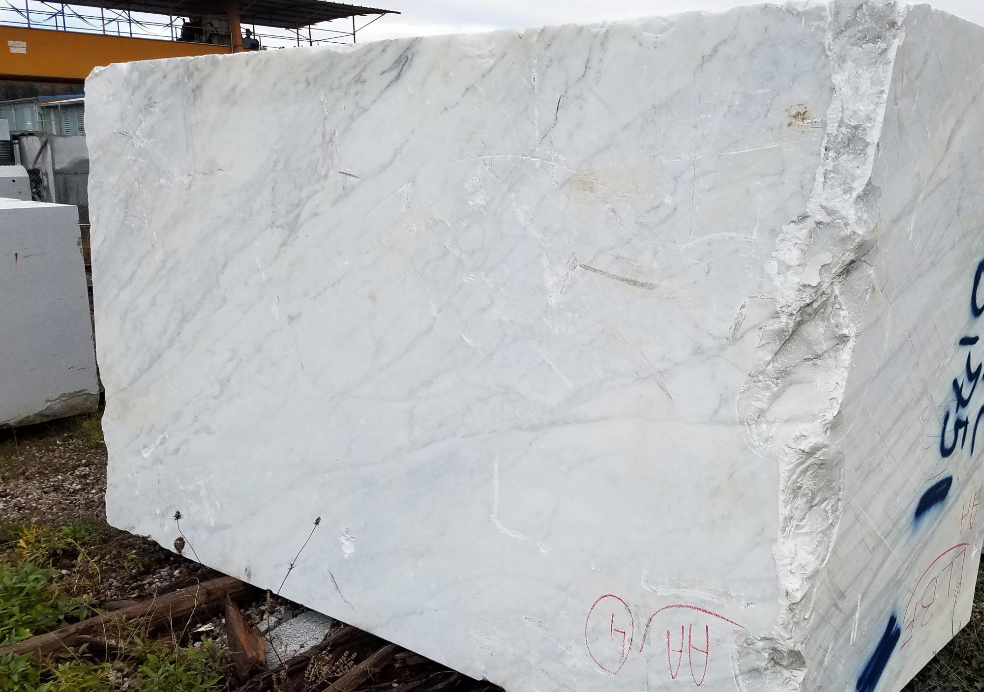 CALACATTA ARNI Suministro Veneto (Italia) de bloques al corte en mármol natural Z0175 , Face A