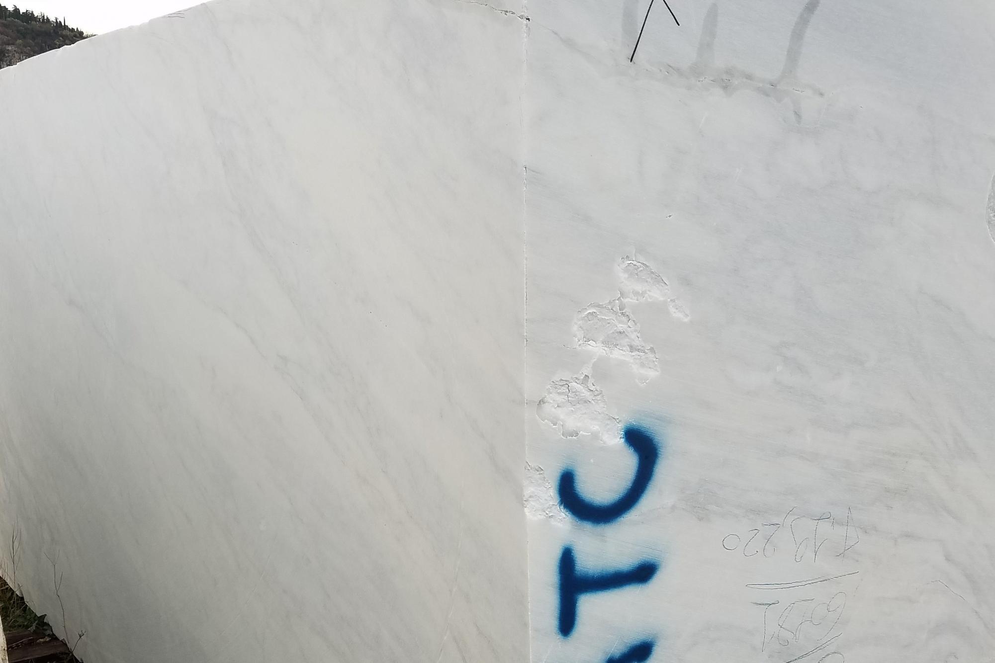 CALACATTA ARNI Suministro Veneto (Italia) de bloques al corte en mármol natural Z0175 , Face