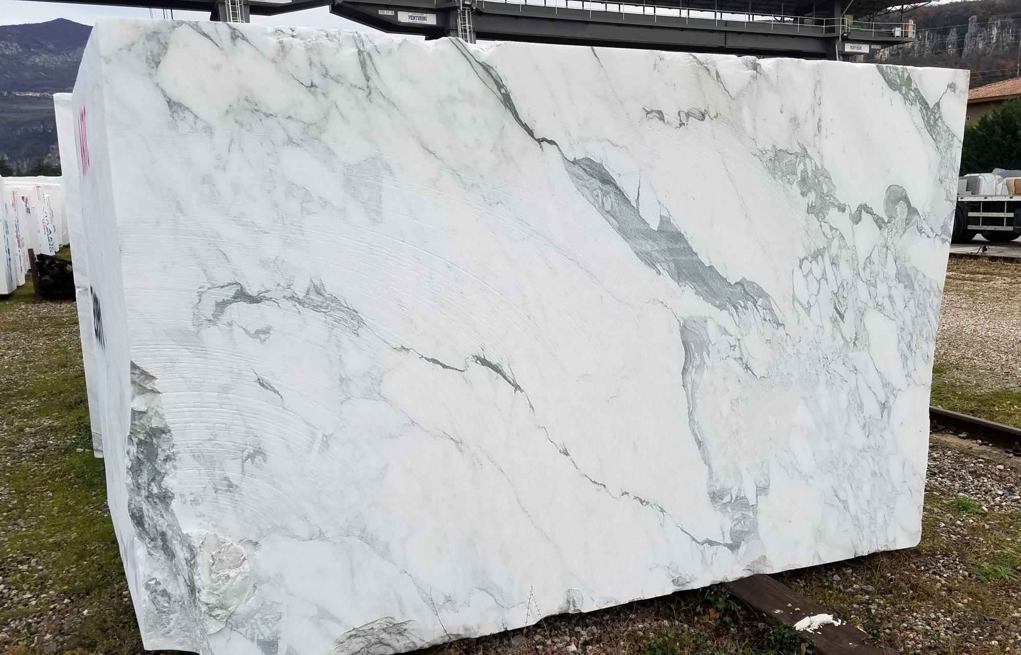 calacatta vagli Suministro Veneto (Italia) de bloques a cortes con diamante en mármol natural Z0391 , BL01