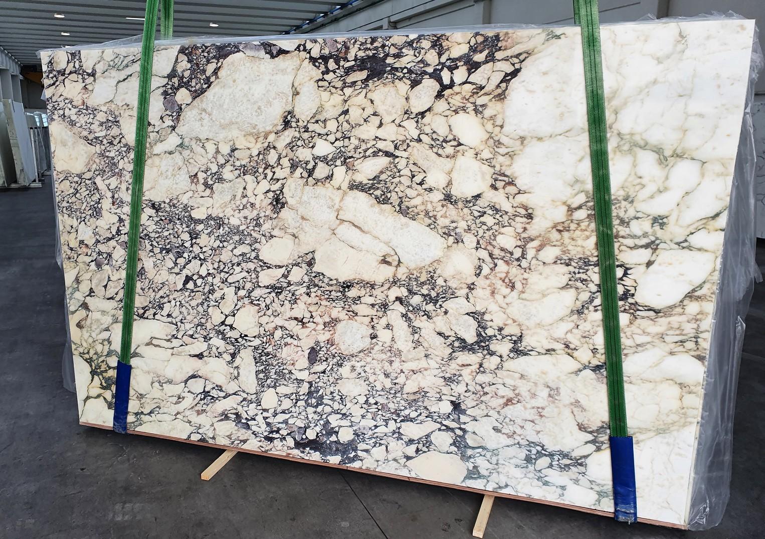 CALACATTA VIOLA Suministro Veneto (Italia) de planchas pulidas en mármol natural 1291 , Slab #42