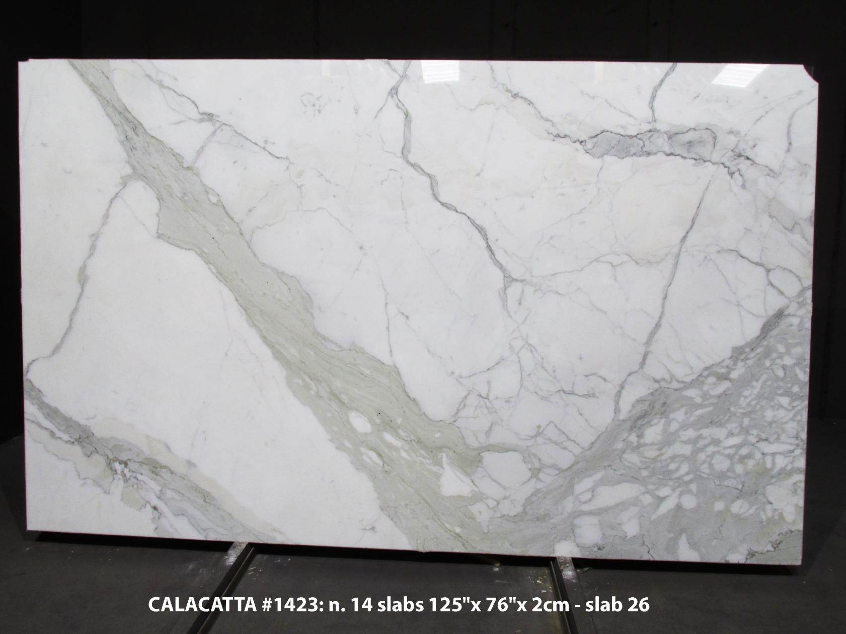 CALACATTA Suministro Veneto (Italia) de planchas pulidas en mármol natural 1423M , Bundle #2