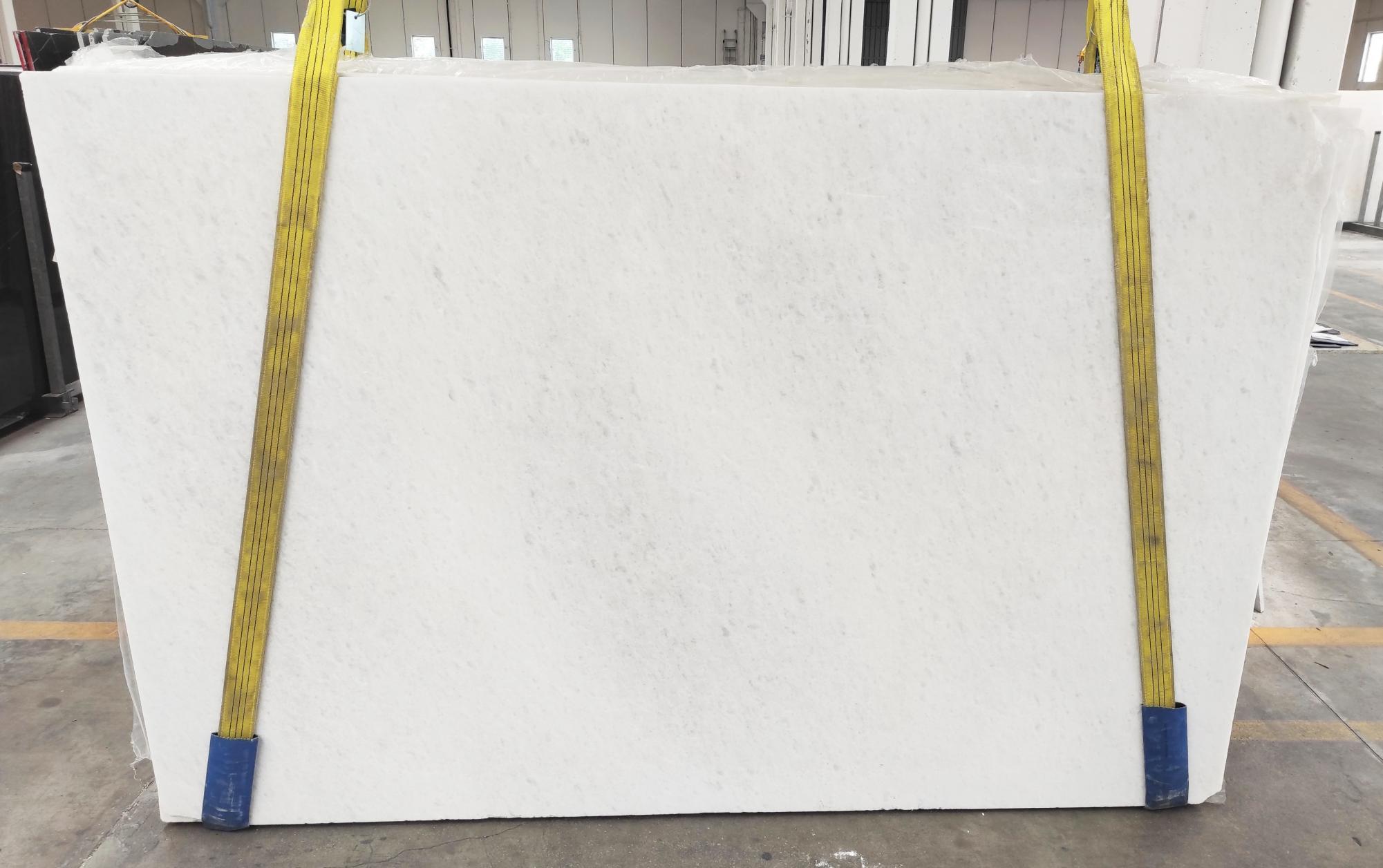 OPAL WHITE Suministro Veneto (Italia) de planchas pulidas en mármol natural 1704M , Slab #21