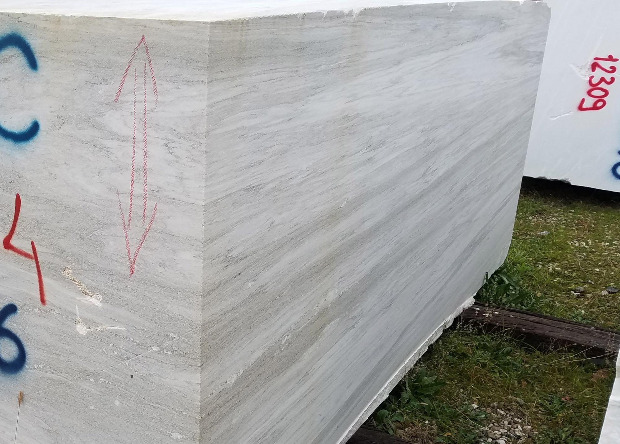 PALISSANDRO CLASSICO VENATO Suministro Veneto (Italia) de bloques a cortes con diamante en Dolomita natural Z0166 , Face  B