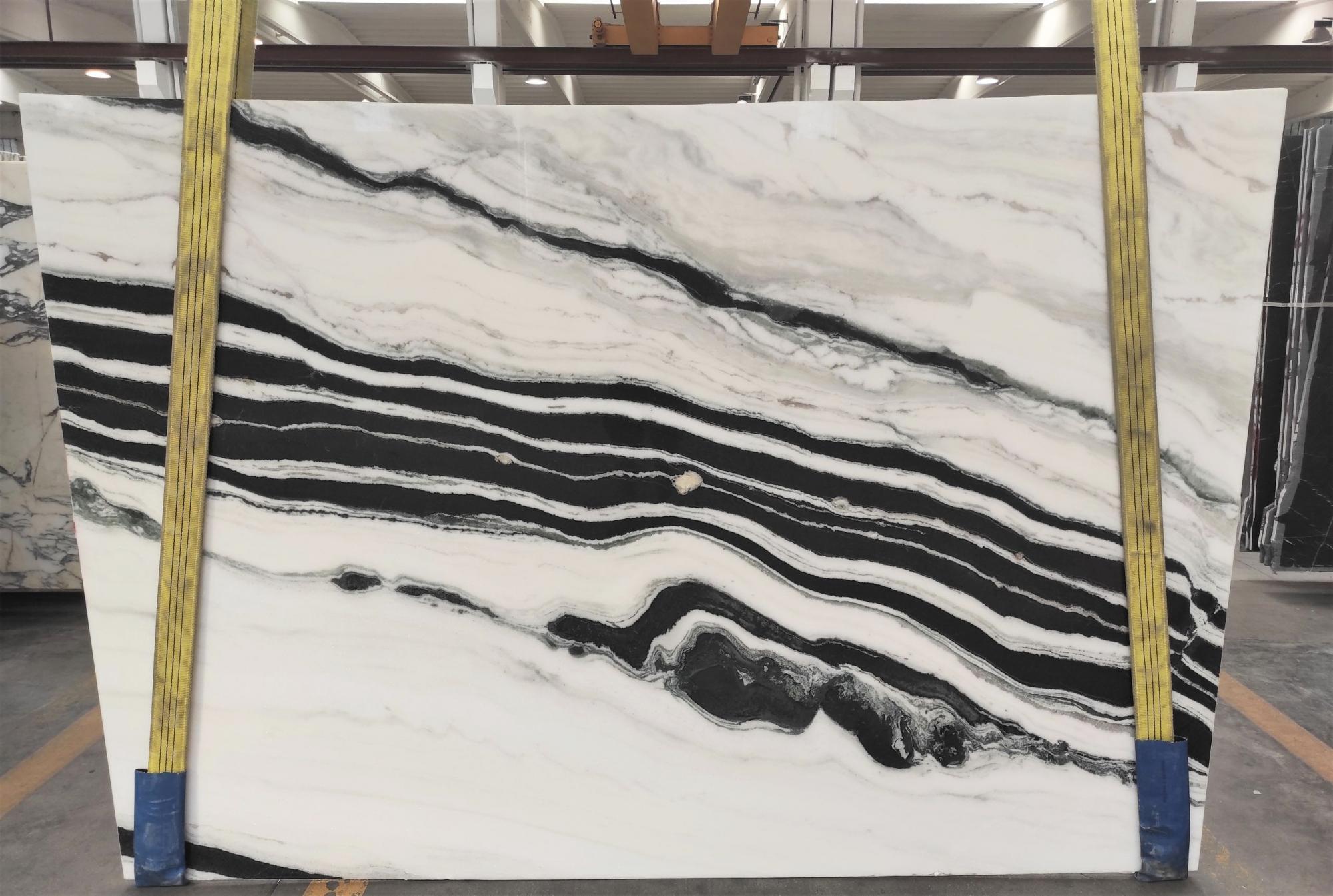 PANDA Suministro Veneto (Italia) de planchas pulidas en mármol natural 1771M , Slab #22