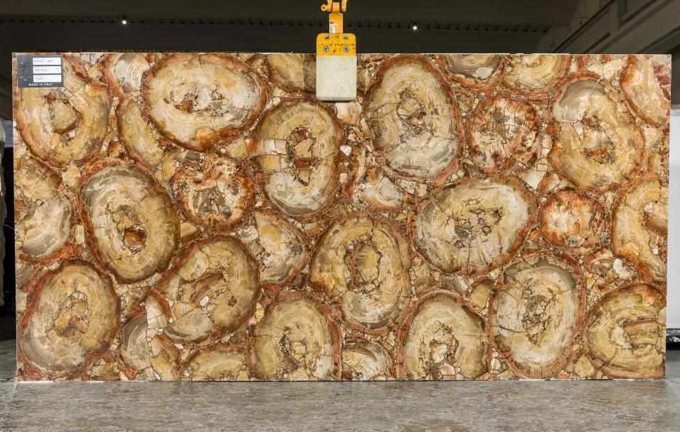 PETRIFIED WOOD BROWN Suministro Veneto (Italia) de planchas pulidas en piedra semi preciosa natural TL0142 , SL2CM