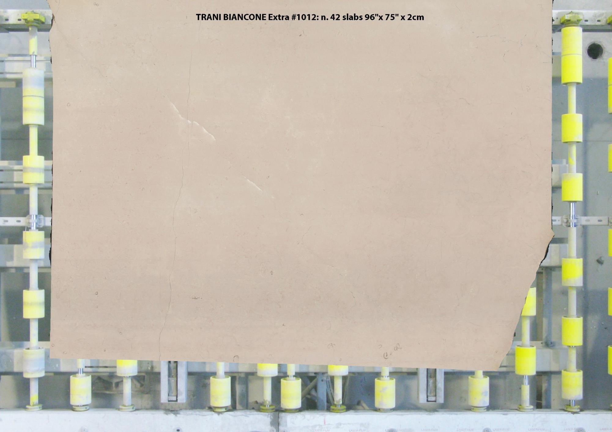 TRANI BIANCONE EXTRA Suministro (Italia) de planchas pulidas en mármol natural 1012 , Slab #15