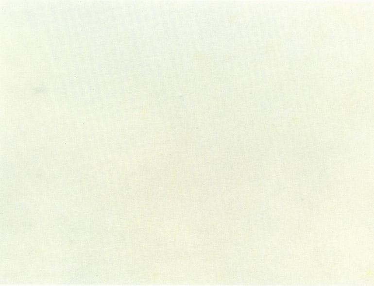 Detallo técnico: STATUARIO ALTISSIMO, mármol natural mate italiano