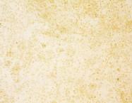 Detallo técnico: VILHONNEUR BANC 8-9, arenisca natural mate francesa