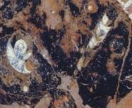 Detallo técnico: PIERRE DU FOUR, mármol natural pulido francés
