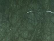 Detallo técnico: TROPICAL FOREST, mármol natural pulido indiano