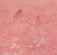 Detallo técnico: BAJESTAN (2), mármol natural pulido iraní