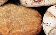 Detallo técnico: DESERTO ROSSO, mármol natural tamboleado español