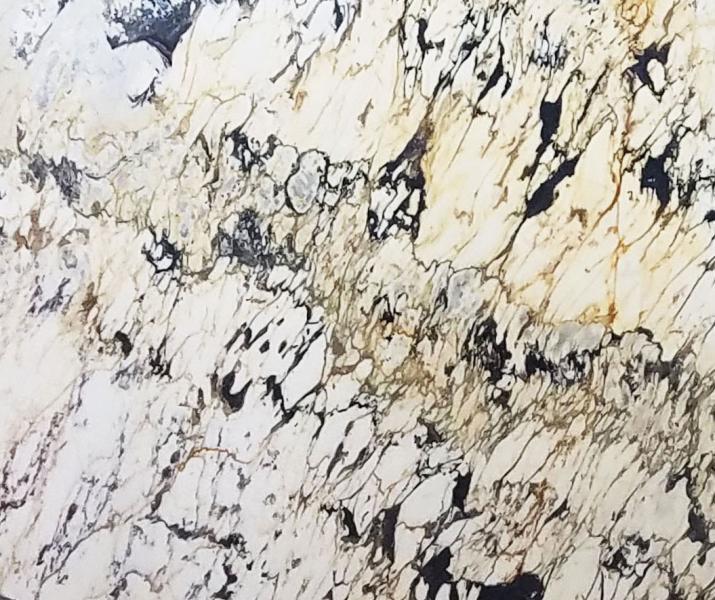 BRECCIA CAPRAIA CLASSICA mármol Italia  ()