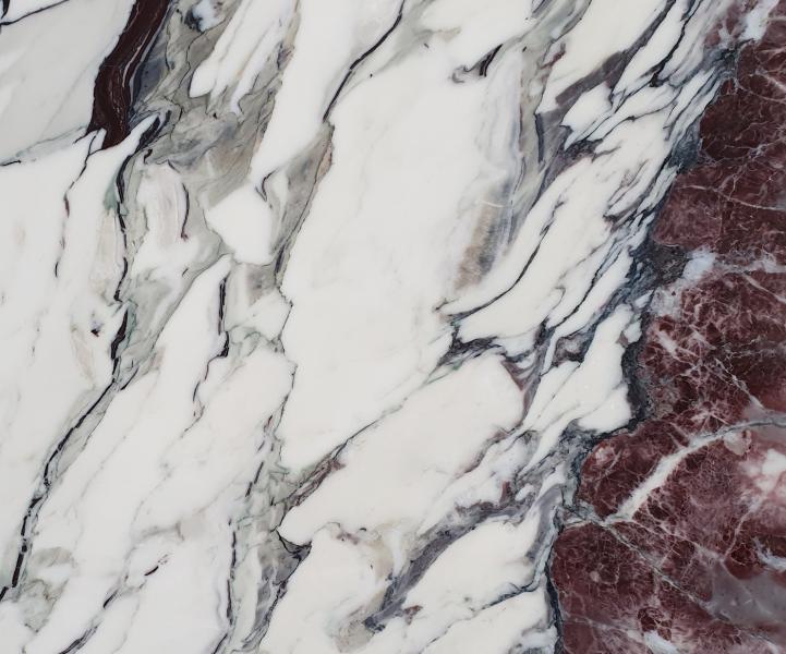 BRECCIA CAPRAIA piedra pulida
